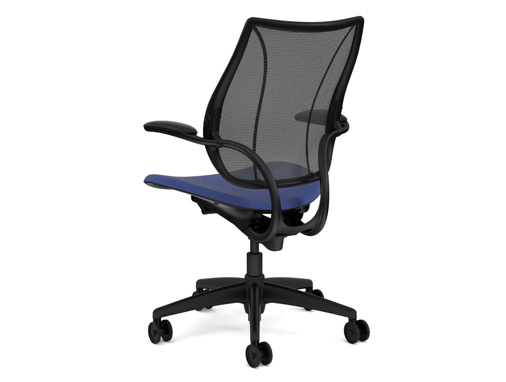 Humanscale Liberty Chair Back Angle Used